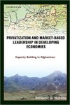 Privatization and Market-Based Leadership in Developing Economies