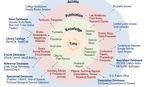 Scientific Publication Cycle