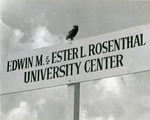 A Florida burrowing owl sits atop one of the early campus signs pointing the way towards the Edwin M. and Ester L. Rosenthal University Center
