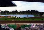Gulfstream Race Track