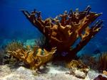 Seascape Photography: 1st Place by Dan Crosset