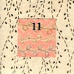 11. Kira's Bug